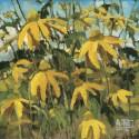 bez tytułu,  10 x 10 cm, 2012 r., olej, płótno, rezerwacja
